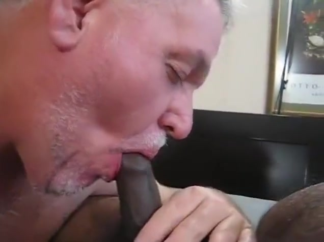 breeding arab bear vagina with blonde pubic hair