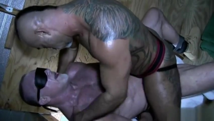 Big dick bear oral sex with cumshot people having sex picture