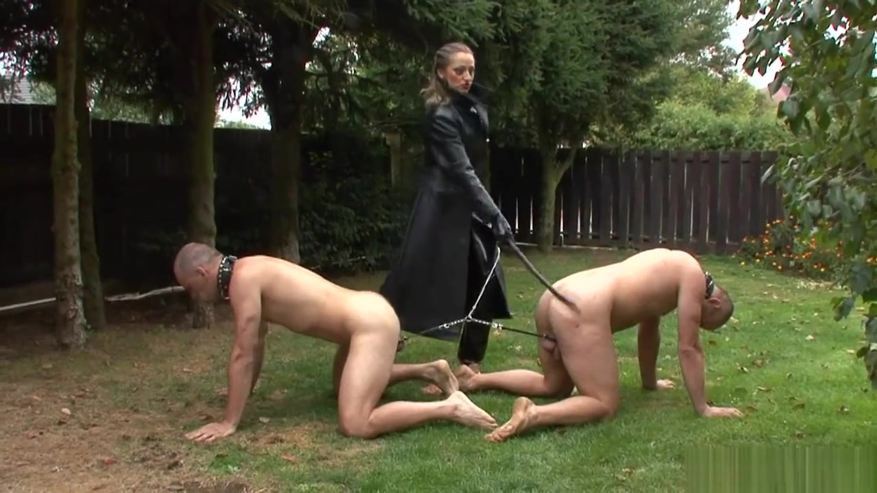 Mistress Trains Her Pathetic Dog slaves